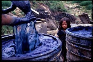 Hmong Indigo (Courtesy Danielle Smith)