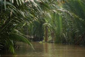 Vietnam (Courtesy Through5eyes blog)
